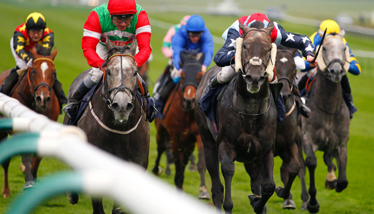 TQ Weekend Wrap – Free Horse Racing Tips and Trends: 31st March 2018