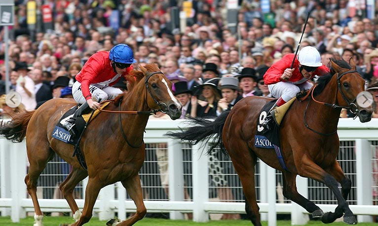 2018 Royal Ascot Free Tips and Trends: DAY TWO (Weds 20th June)