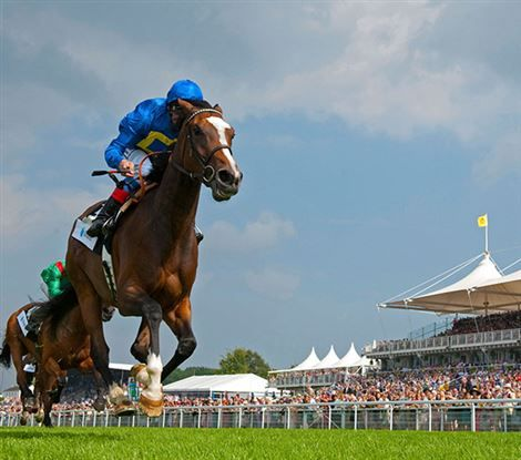 Glorious Goodwood Free Tips and Trends: DAY TWO (Weds 1st Aug 2018)