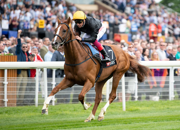 2018 St Leger Free Tips and Trends