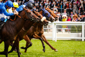 Temple Stakes Trends and Free Tips