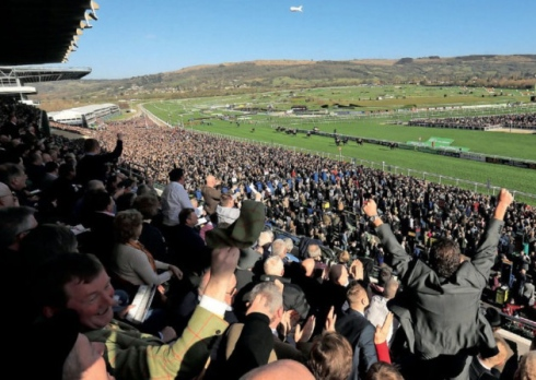 Cheltenham Tips and Trends: Fri 14th Dec 2018