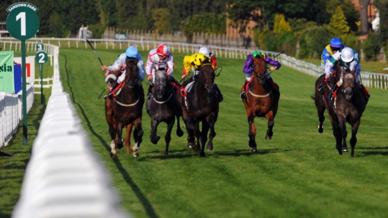 TQ Weekend Wrap – Free Horse Racing Tips and Trends: 9th June 2018