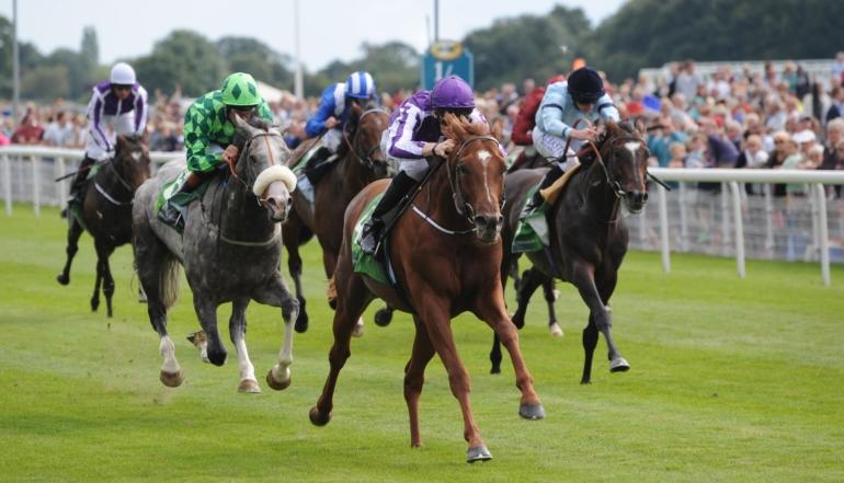 irish 2000 guineas 2021 betting trends