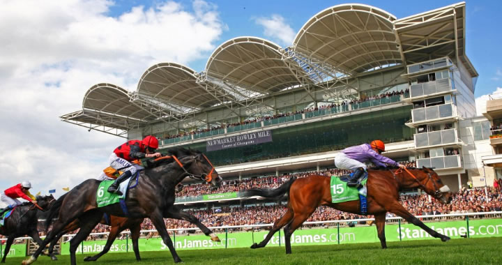 Newmarket Horse Racing Trends & Tips: Friday 11th Oct 2019